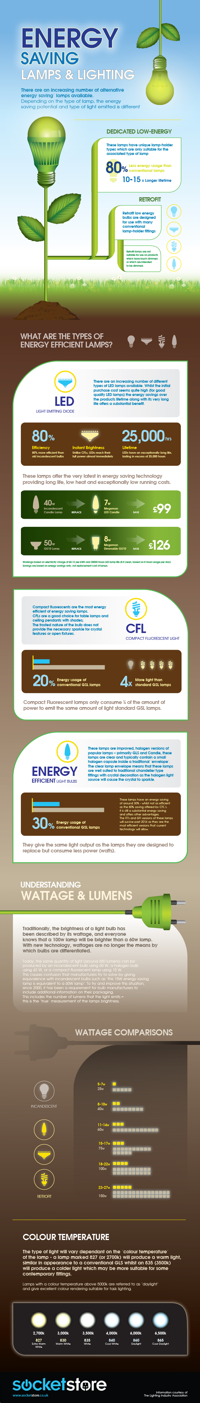 Energy Saving Lighting Infographic